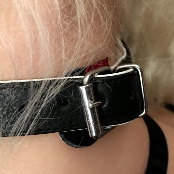 Halsfessel mit 3 D-Ringen, schwarz/weiß
