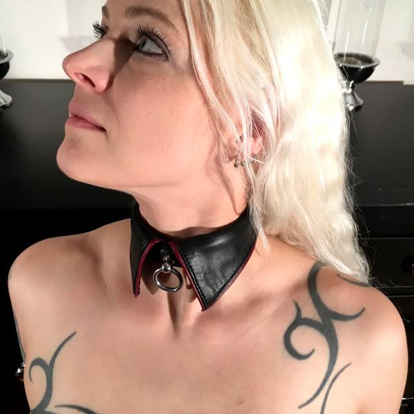 Kragen-Halsband, schwarz-bordeaux