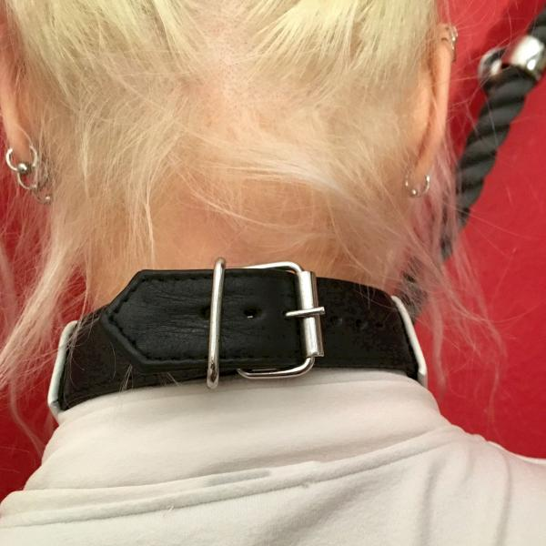 Kragen-Halsband, schwarz-weiß